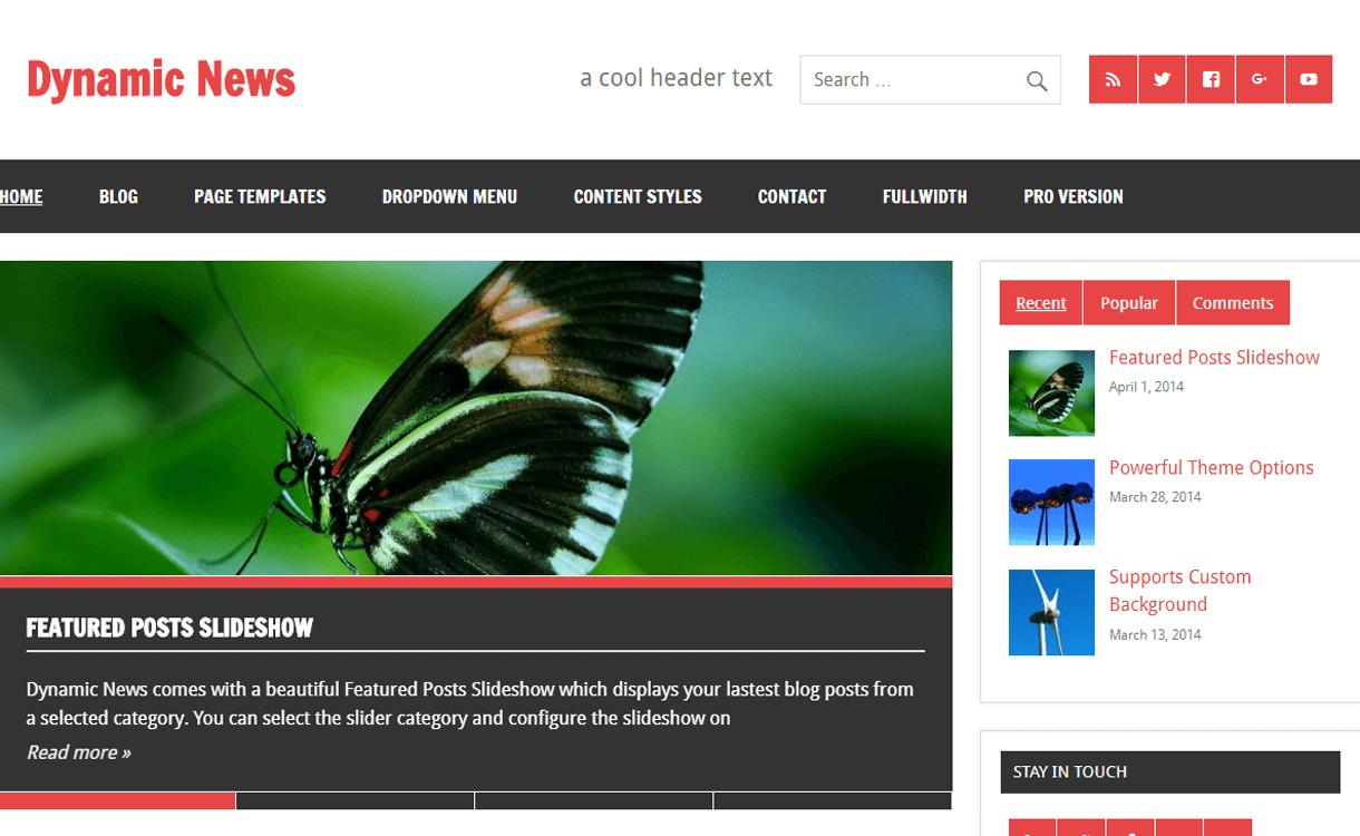 Dynamic News-Best Free WordPress News-Magazine/Online Editorial Themes