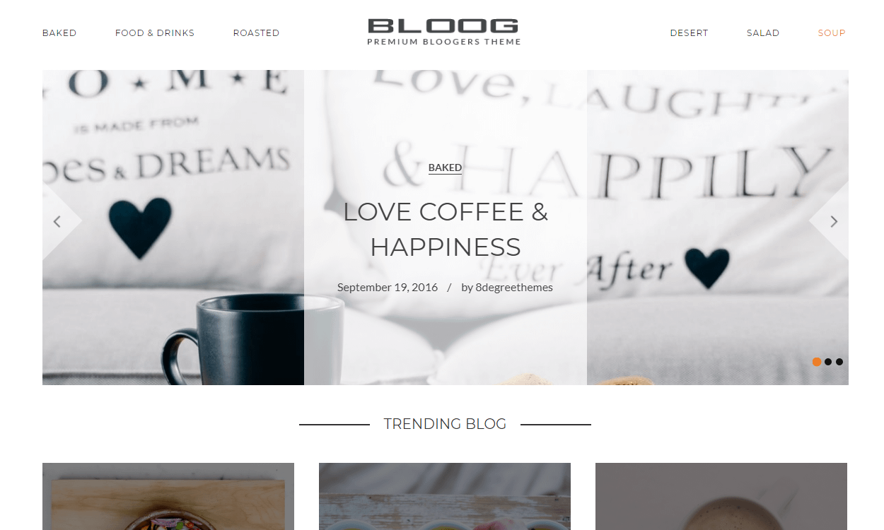 Bloog Pro - Best Premium WordPress Blog Theme