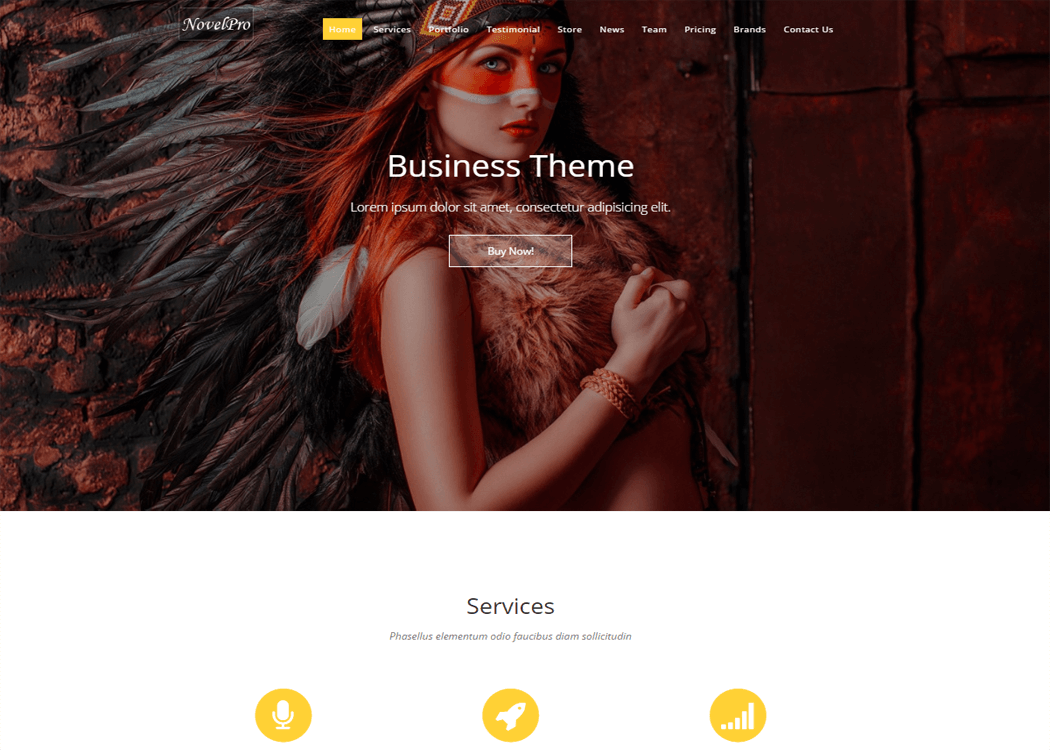 Novel Pro - WordPress On page Theme