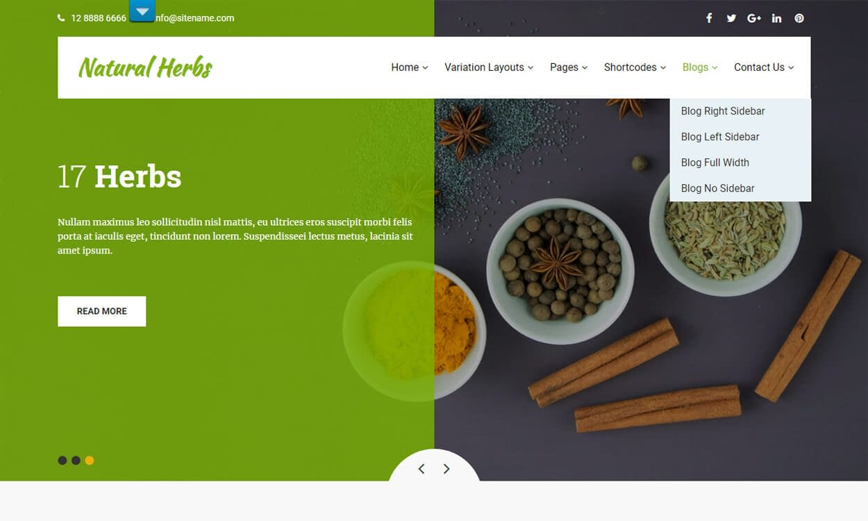 Natural Herbs Lite - Best Free WordPress Themes August