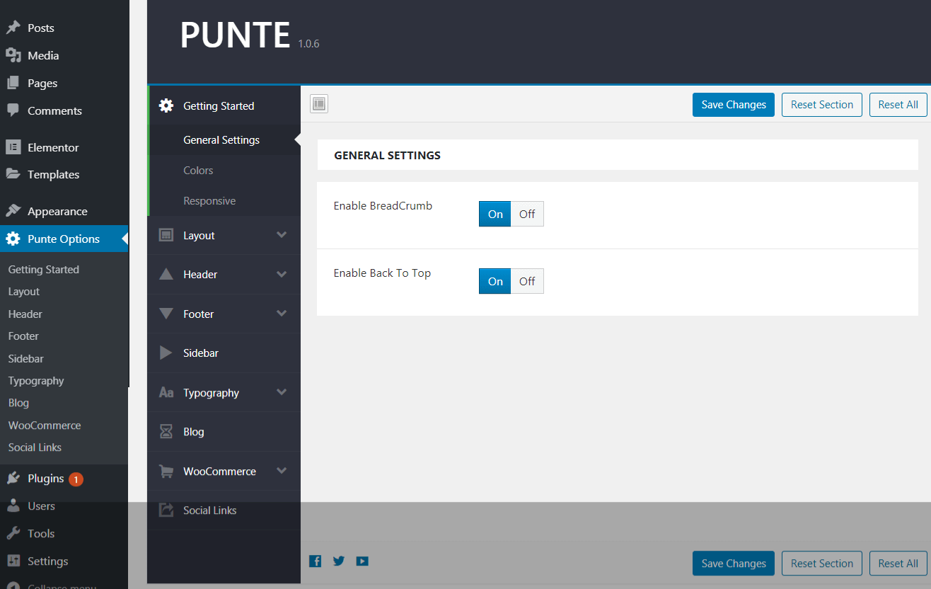 Punte WordPress Theme Options