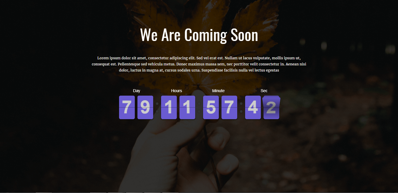 Ripple Pro - Best Coming Soon and Under Maintenance WordPress Themes and Templates