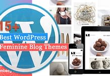 Best WordPress Feminine Blog Themes