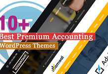 Best Premium Accounting WordPress Themes