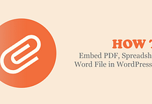 How to Embed PDF, Spreadsheet & Word File in WordPress Blog?
