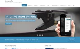 AccessPressPro - Premium Multipurpose WordPress Theme