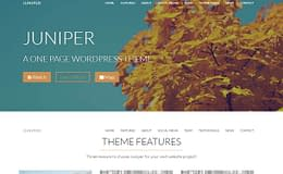 Juniper - Premium WordPress One Page Theme