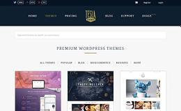 tesla-themes-WordPress-theme-store