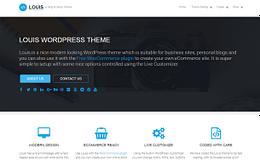 Louis - Free Modern WordPress Theme