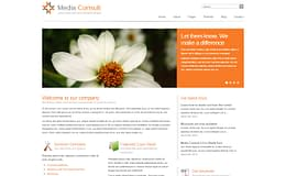 Media Consult - Modern Business WordPress Theme