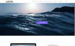 Shapely - Versatile One Page WordPress Theme