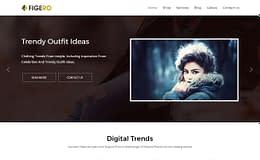 Figero Pro –Flexible Multipurpose WordPress Theme