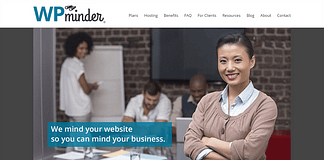 WP Minder WordPress Customization Service