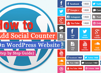 How to Add Social Counter on WordPress Website? (Step by Step Guide)