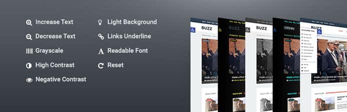 Accessibility - Responsive WordPress Plugin