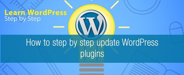 How to step by step update WordPress plugins