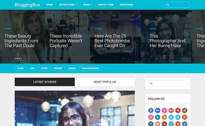 Blogging Box - Multipurpose WordPress Blogging Theme