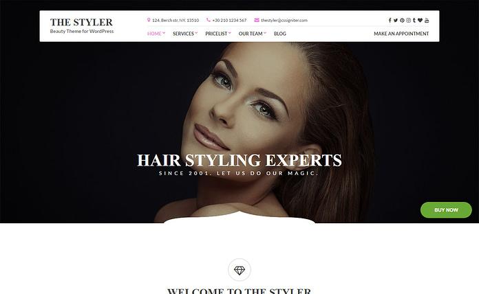 TheStyler - Stylish Beauty WordPress Theme