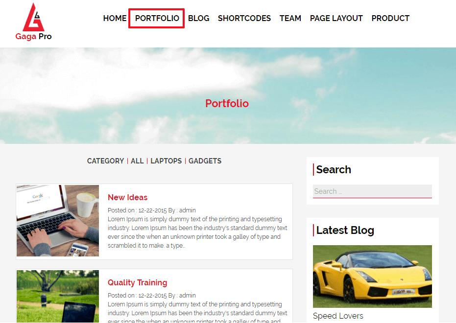 portfolio-layout-gaga-pro