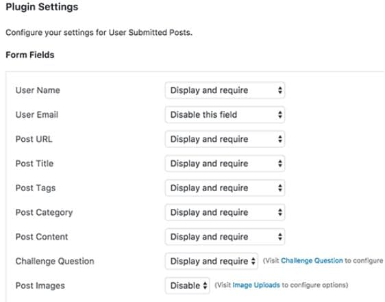 Allow Users to Submit Posts.. - How to Allow Users to Submit Posts to Your WordPress Site?