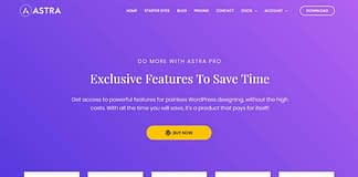 Astra Pro - Premium WordPress Multipurpose Theme