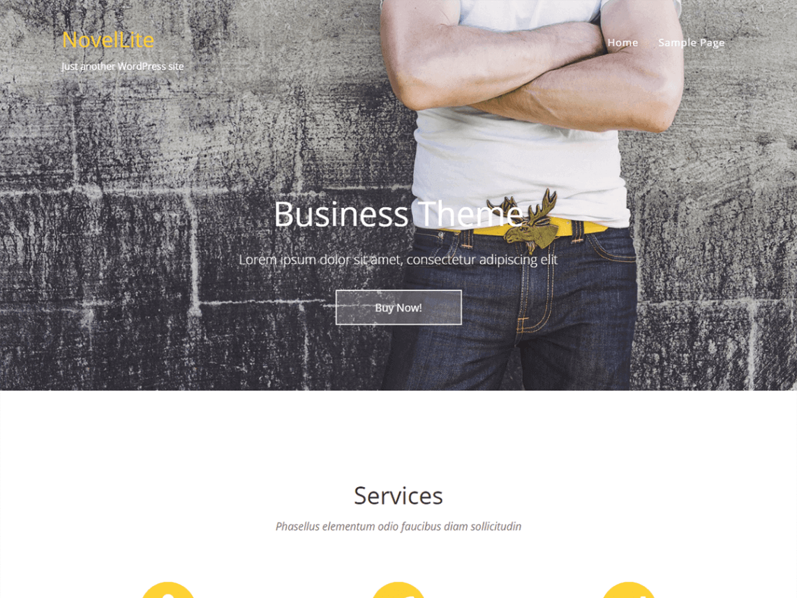 NovelLite - 30+ Best Free WordPress Landing Page Themes and Templates 2019