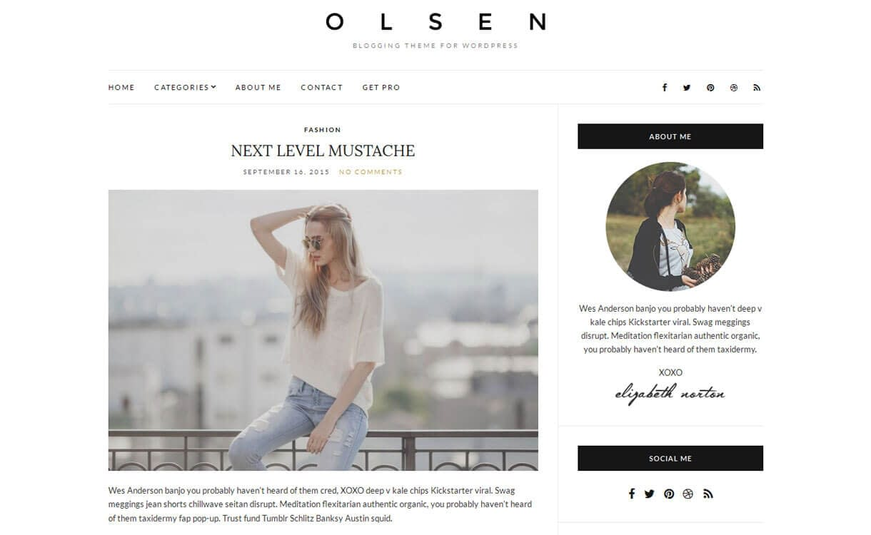 Olsen Light - Best Free WordPress Blog Themes for 2017