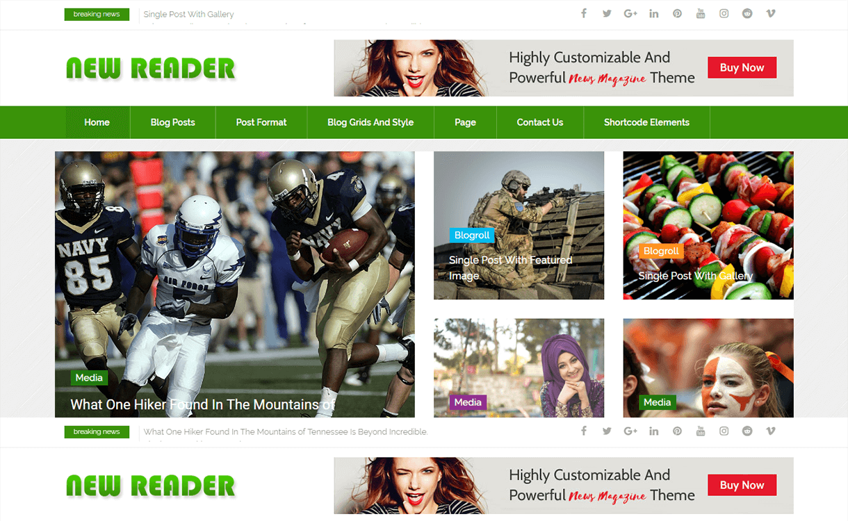 NewsReader-Best Free WordPress Themes November 2017