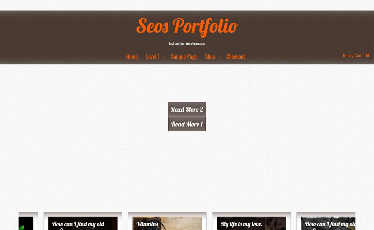 Seos Portfolio-Free WordPress Portfolio Themes