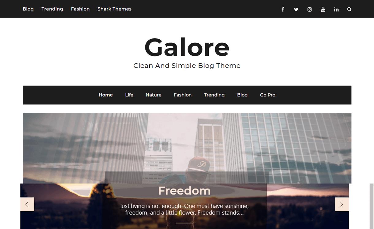 Galore-Best Free WordPress Themes March 2018