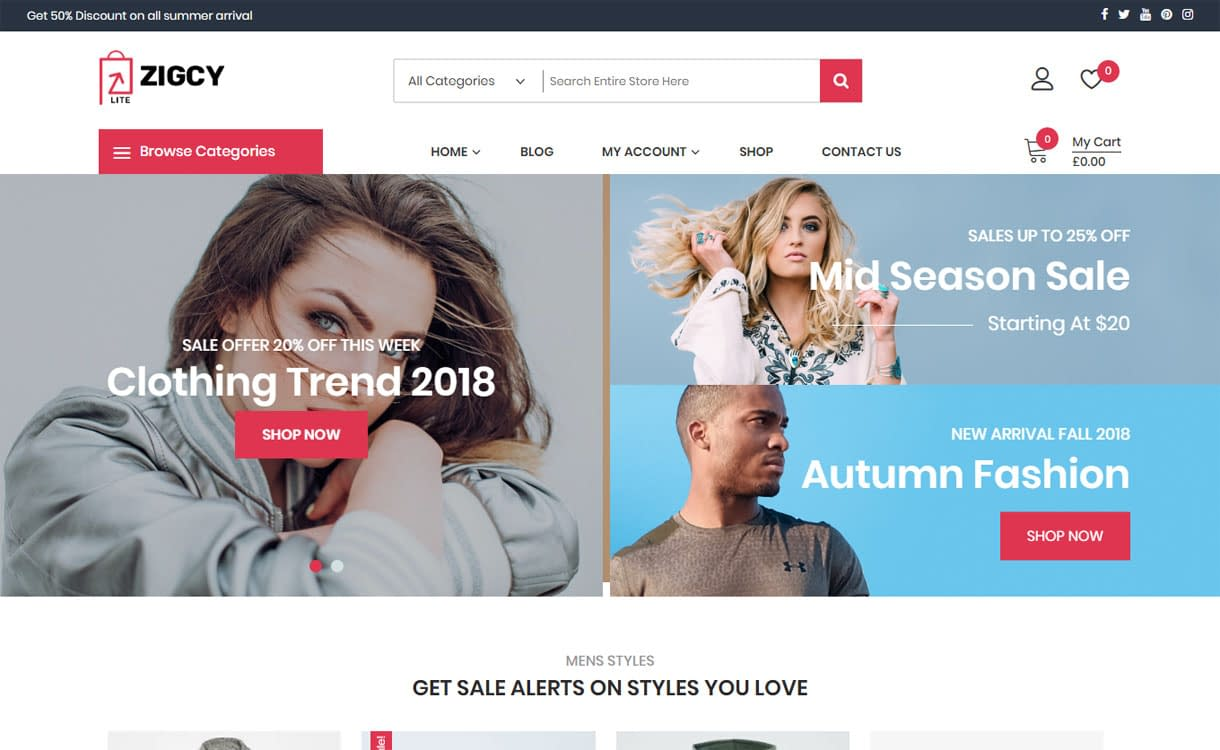 Zigcy lite - WordPress eCommerce theme