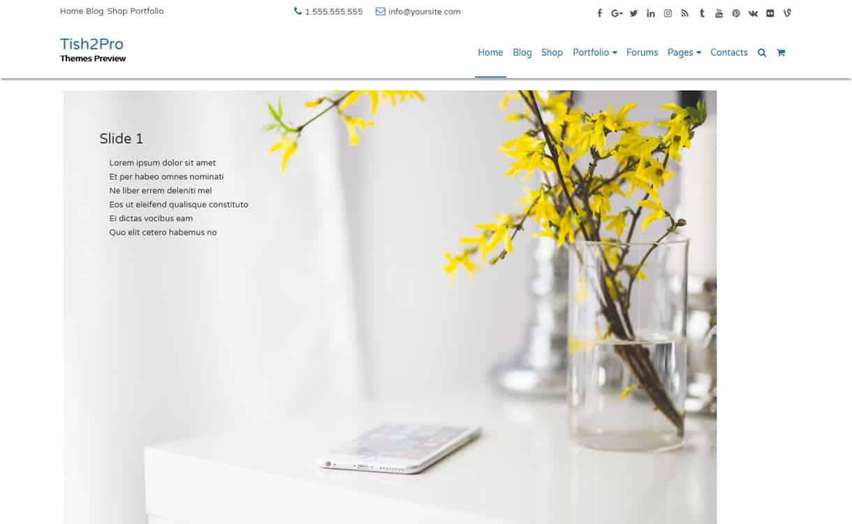 Tish2-Best Free WordPress Themes May 2018