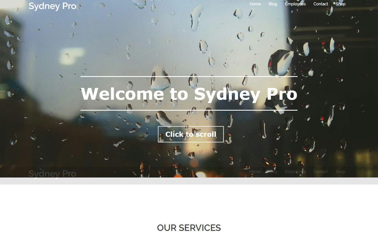 Sydney Pro 1 - 30+ Best Premium WordPress Business/Agency Themes for 2019
