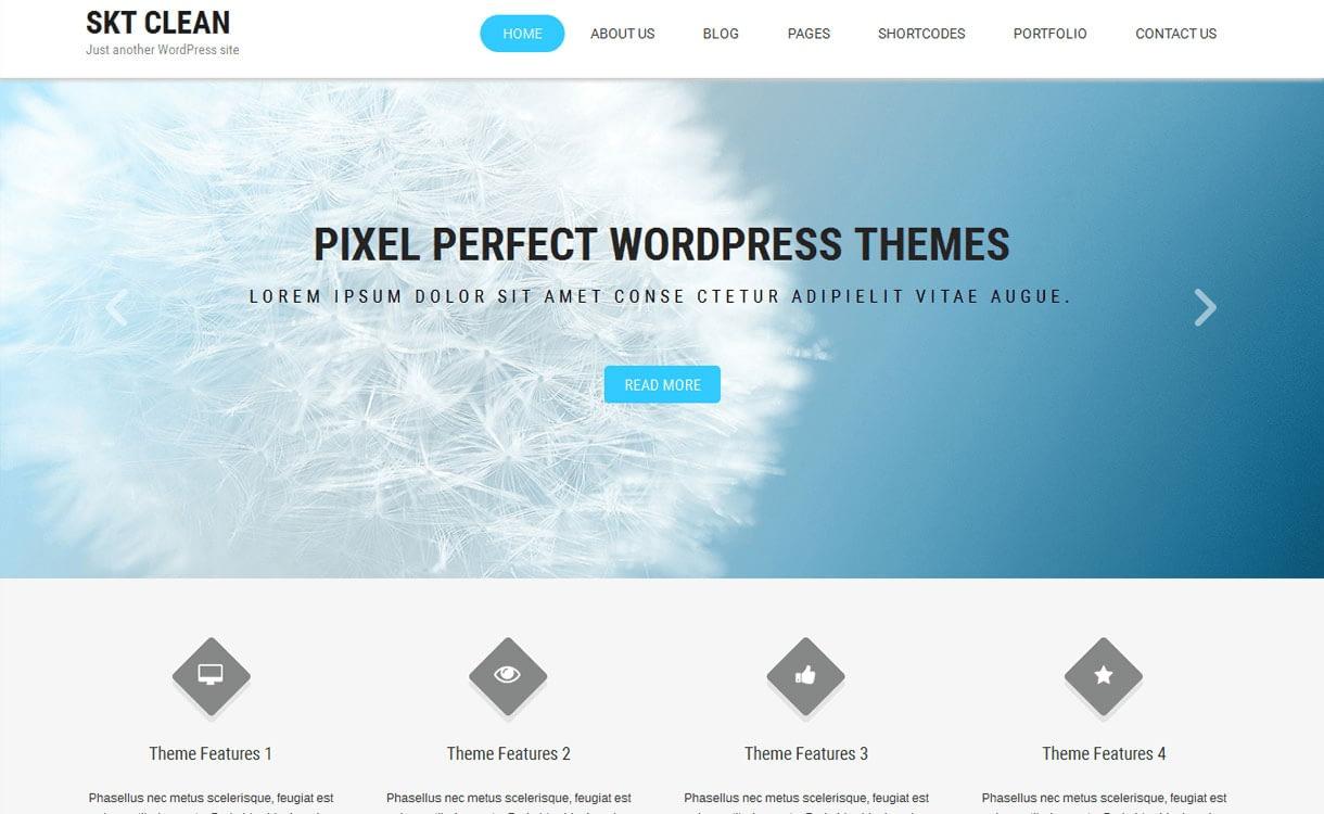 Clean Lite - 11+ Best Free Responsive WordPress Themes October 2016