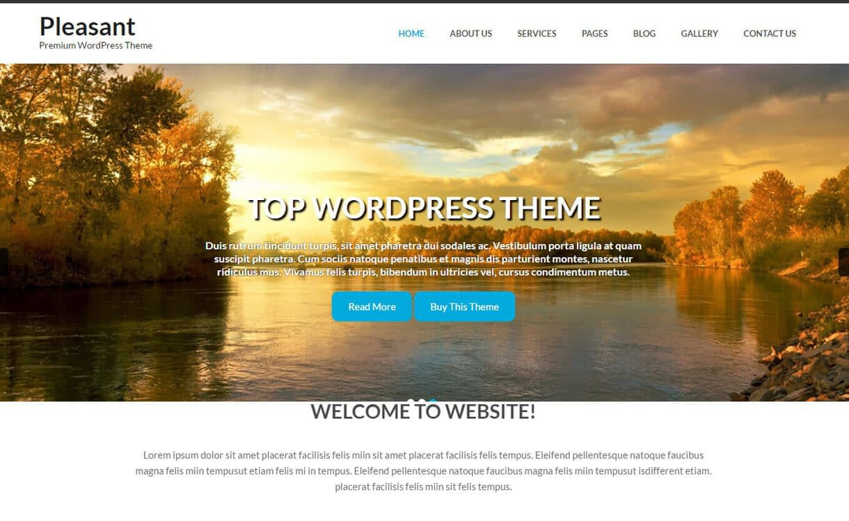 pleasant lite 1 - 11+ Best Free Responsive WordPress Themes November 2016