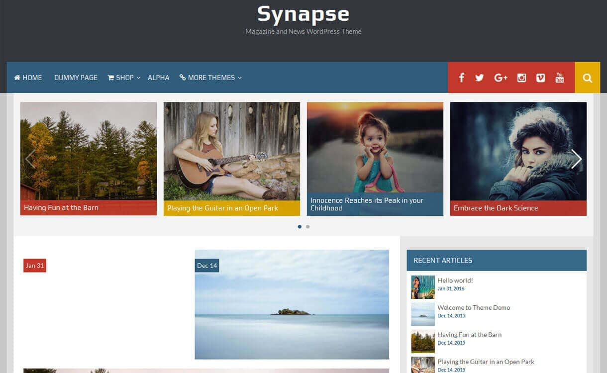 Synapse - 11+ Best Free Responsive WordPress Themes December 2016