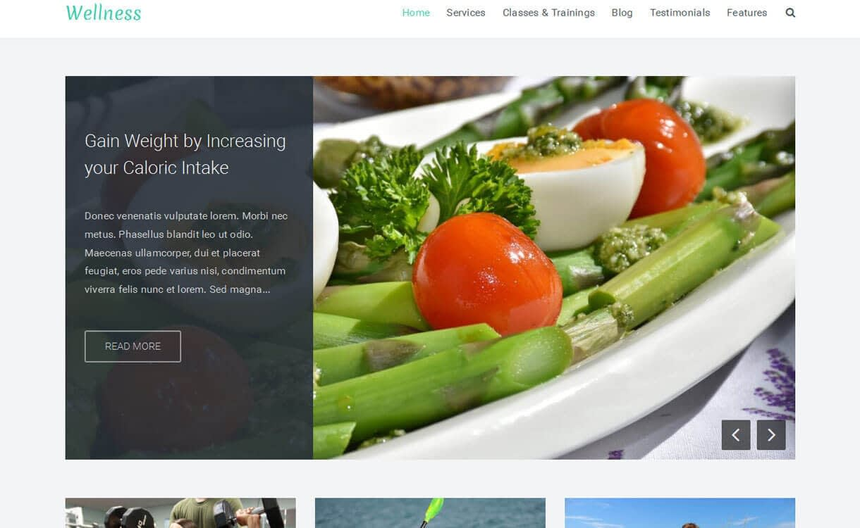 Wellness - 23+ Best Free WordPress Health and Medical Themes 2019