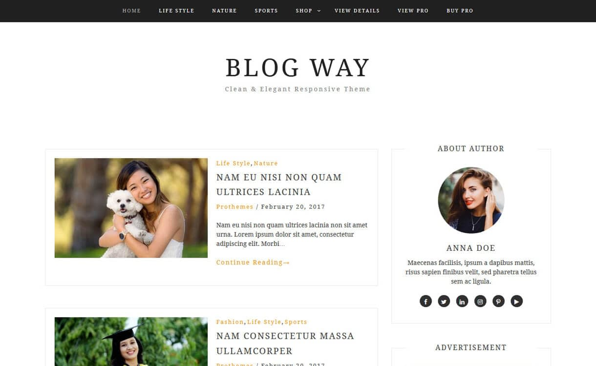 blog way best free wordpress blog themes - 30+ Best Free WordPress Personal/Professional Blog Themes for 2019