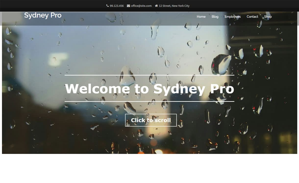 Sydney Pro - 35+ Best Premium WordPress Themes and Templates 2019 [UPDATED]