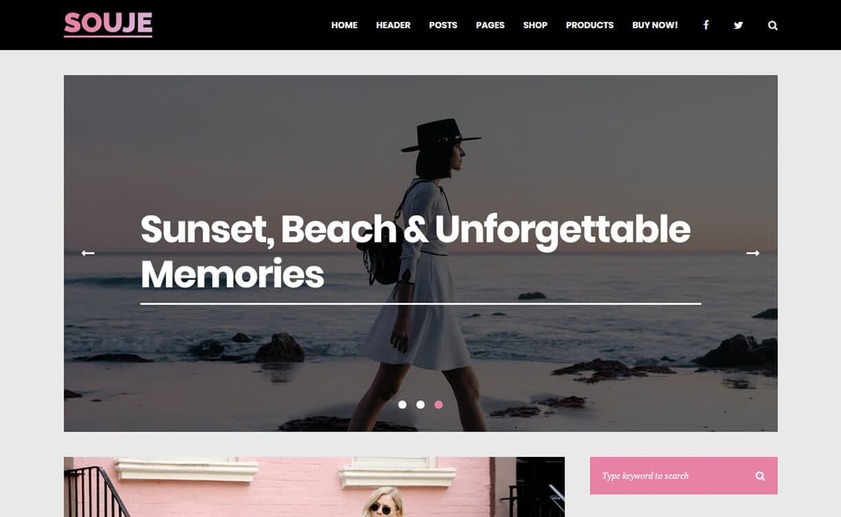 souje premium wordpress blog theme - 30+ Best Premium WordPress Blog Themes 2019
