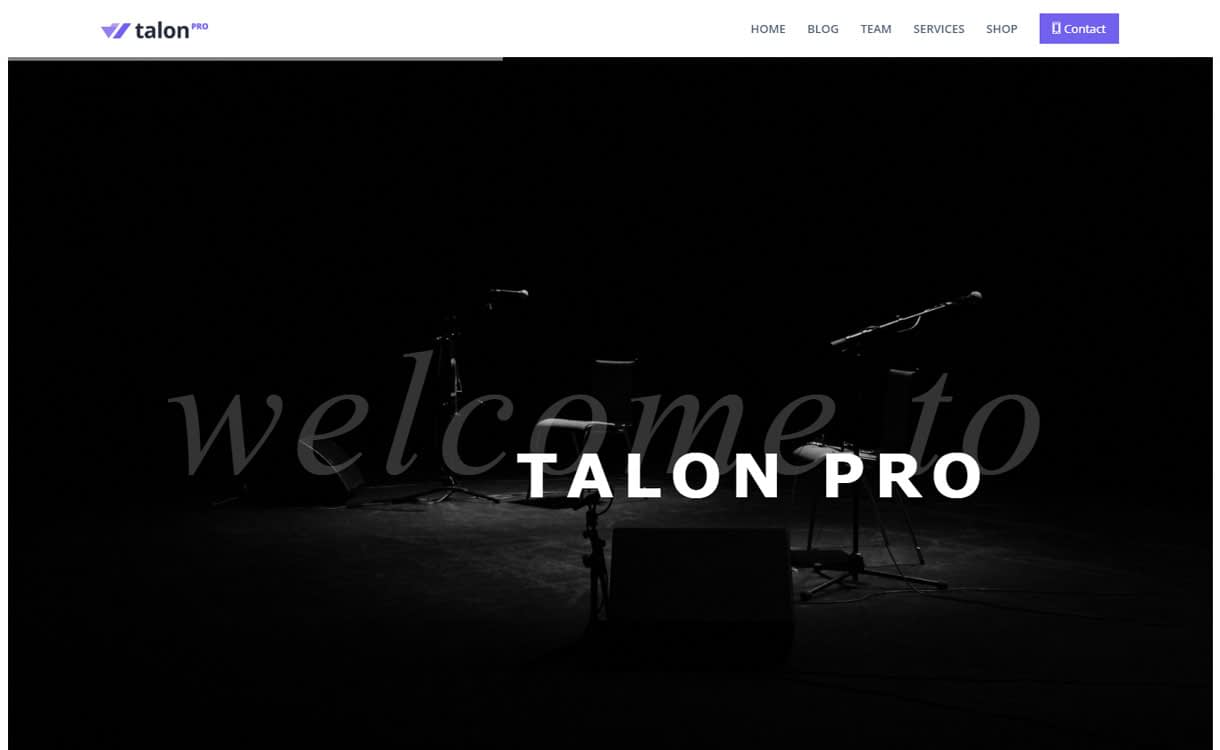 Talon Pro - Multipurpose Business WordPress Theme for 2017