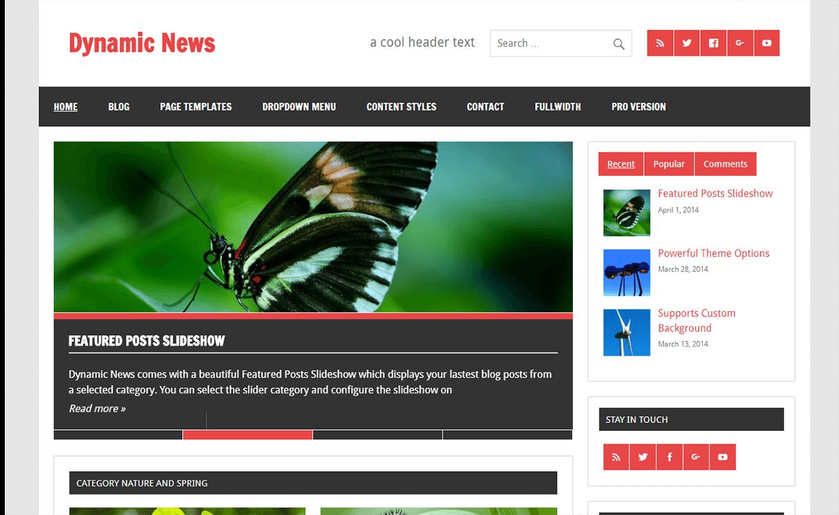 Dynamic News Lite-Free Magazine WordPress Theme