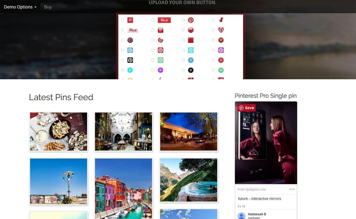 AccessPress Pinterest Pro - WordPress Pinterest Plugins