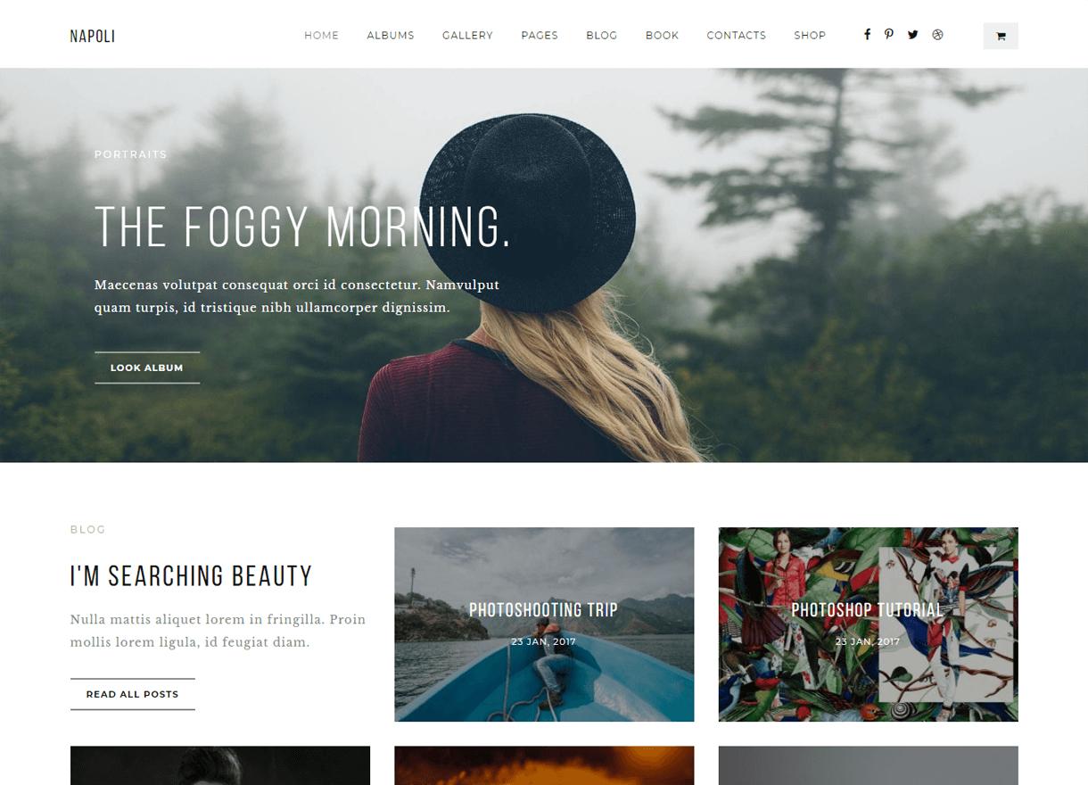 napoli premium wordpress photography themes - 30+ Best Premium WordPress Photography Themes 2019