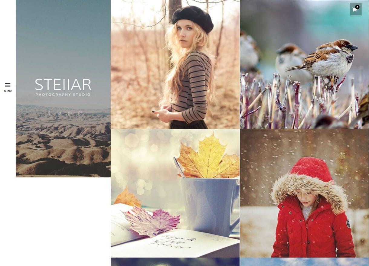 stella premium wordpress photography themes - 30+ Best Premium WordPress Photography Themes 2019