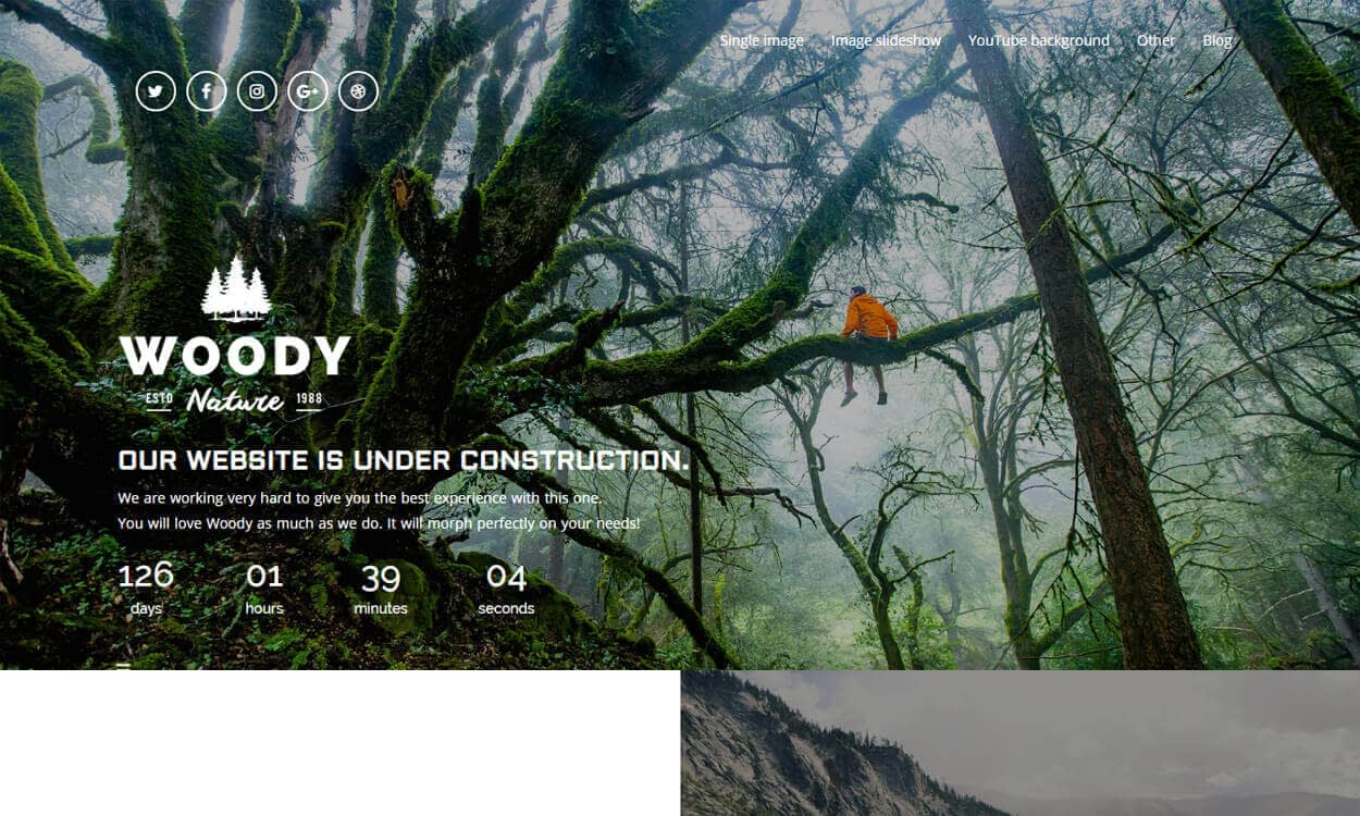 Woody - Best Coming Soon and Under Maintenance WordPress Themes and Templates