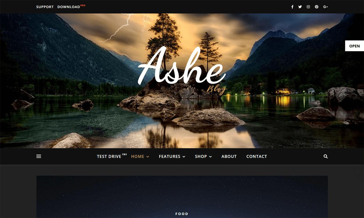 ashe blog pro - 30+ Best Premium WordPress Blog Themes 2019