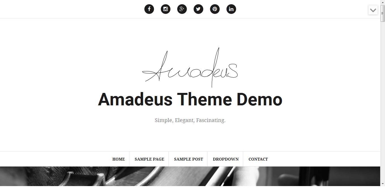 Amadeus - Best Free WordPress Personal/Professional Blog Themes