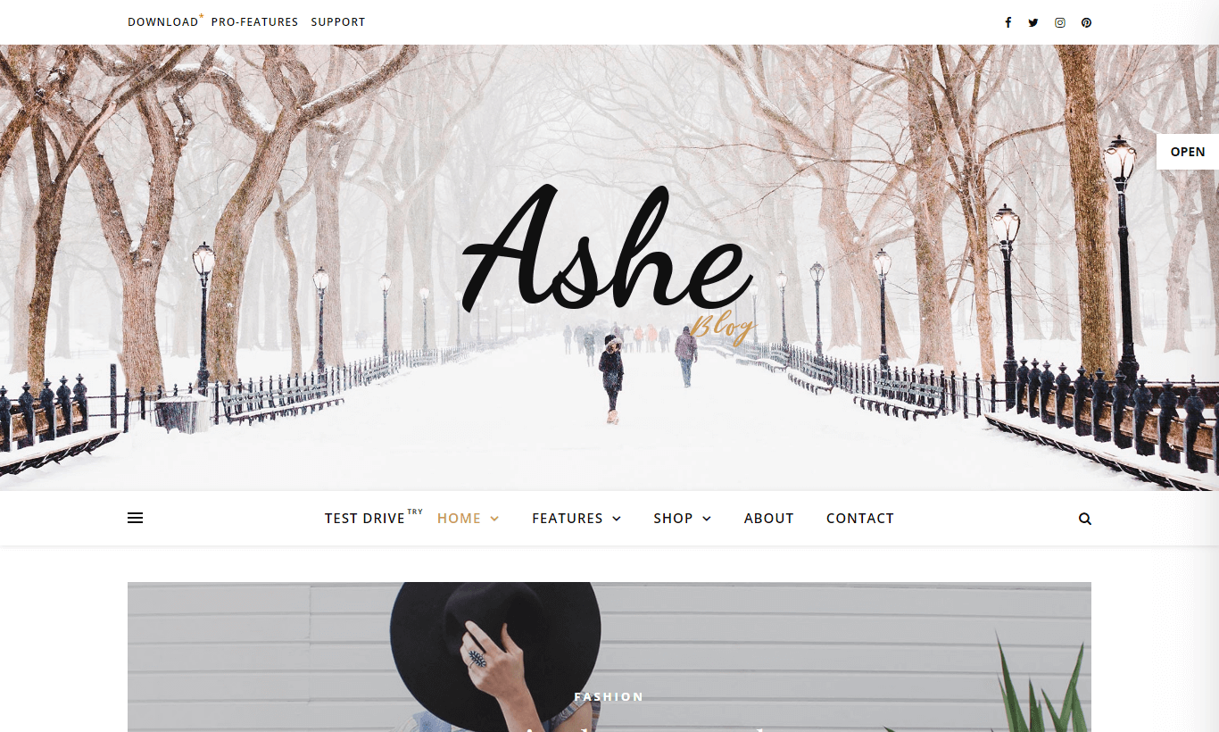 ashe - 30+ Best Free WordPress Personal/Professional Blog Themes for 2019