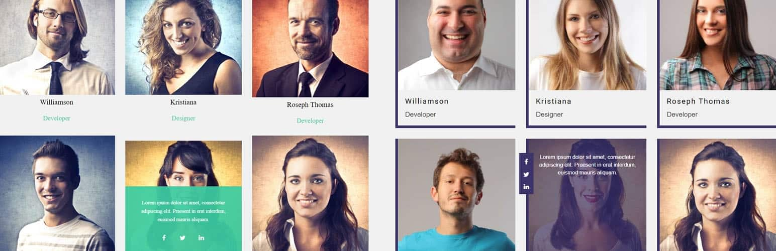 team member showcase - 5+ Best Free WordPress Team Showcase Plugins (Handpicked Collection)